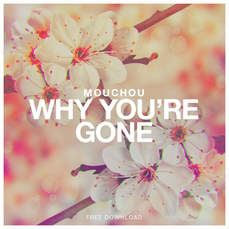 mouchou why you are gone cover